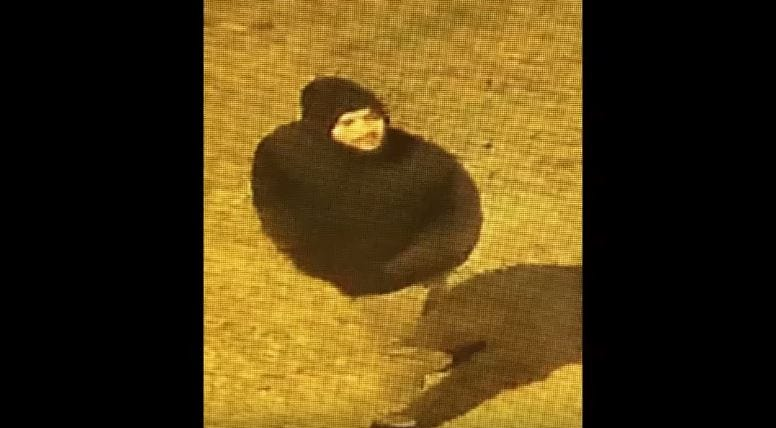 Purse Snatcher Caught On Camera Knocking Victim To Ground In South OKC