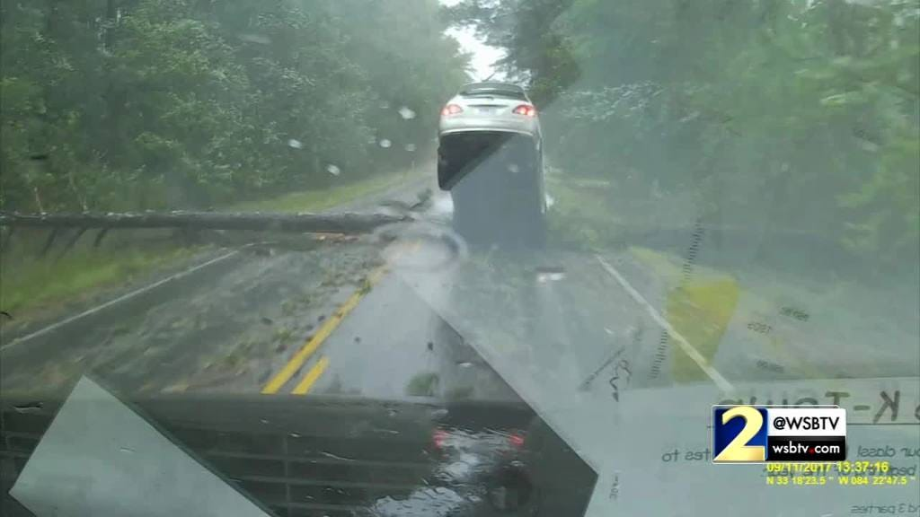 RAW: Dramatic Video Shows Tree Fall In Front Of Moving Car
