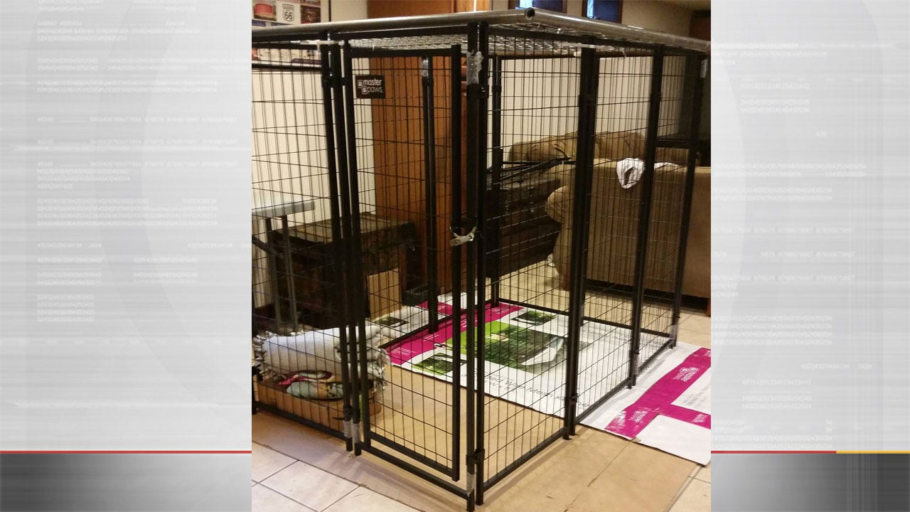 Grandmother Accused Of Keeping 9-Year-Old Girl In Kennel