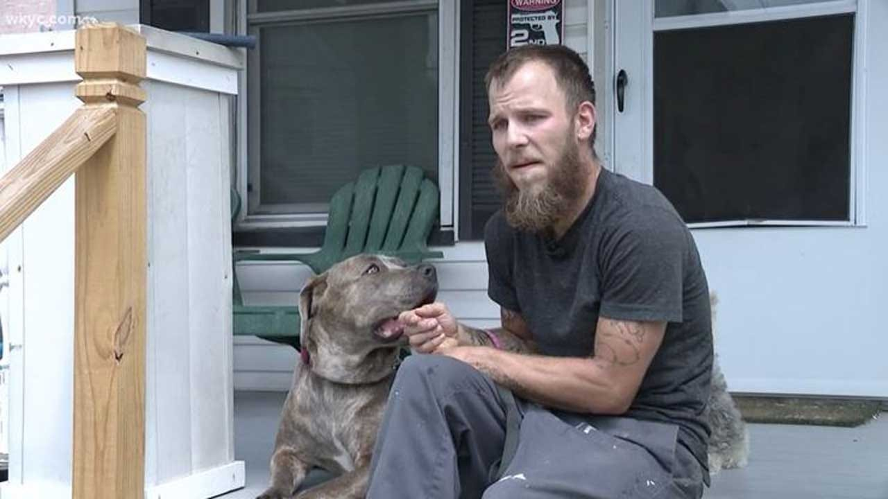 Ohio Man Faces Charges After Rescuing Dogs From Hot Car