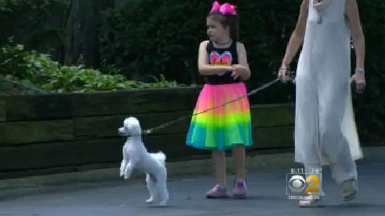 Illinois Mom Says Cops Were Called When 8-Year-Old Daughter Walked Dog Alone