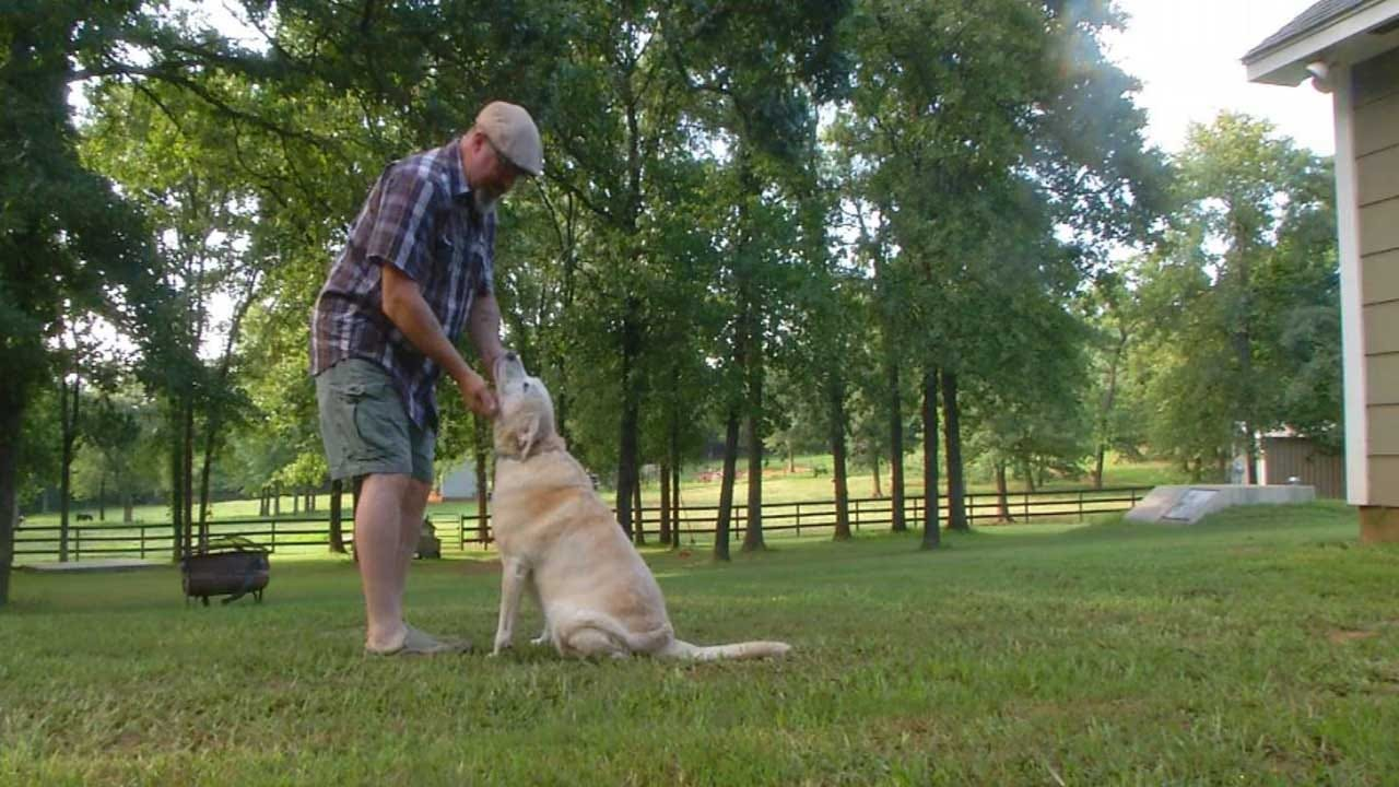 Good Samaritan Steps In To Help Dog Being Choked, Dragged By Owner