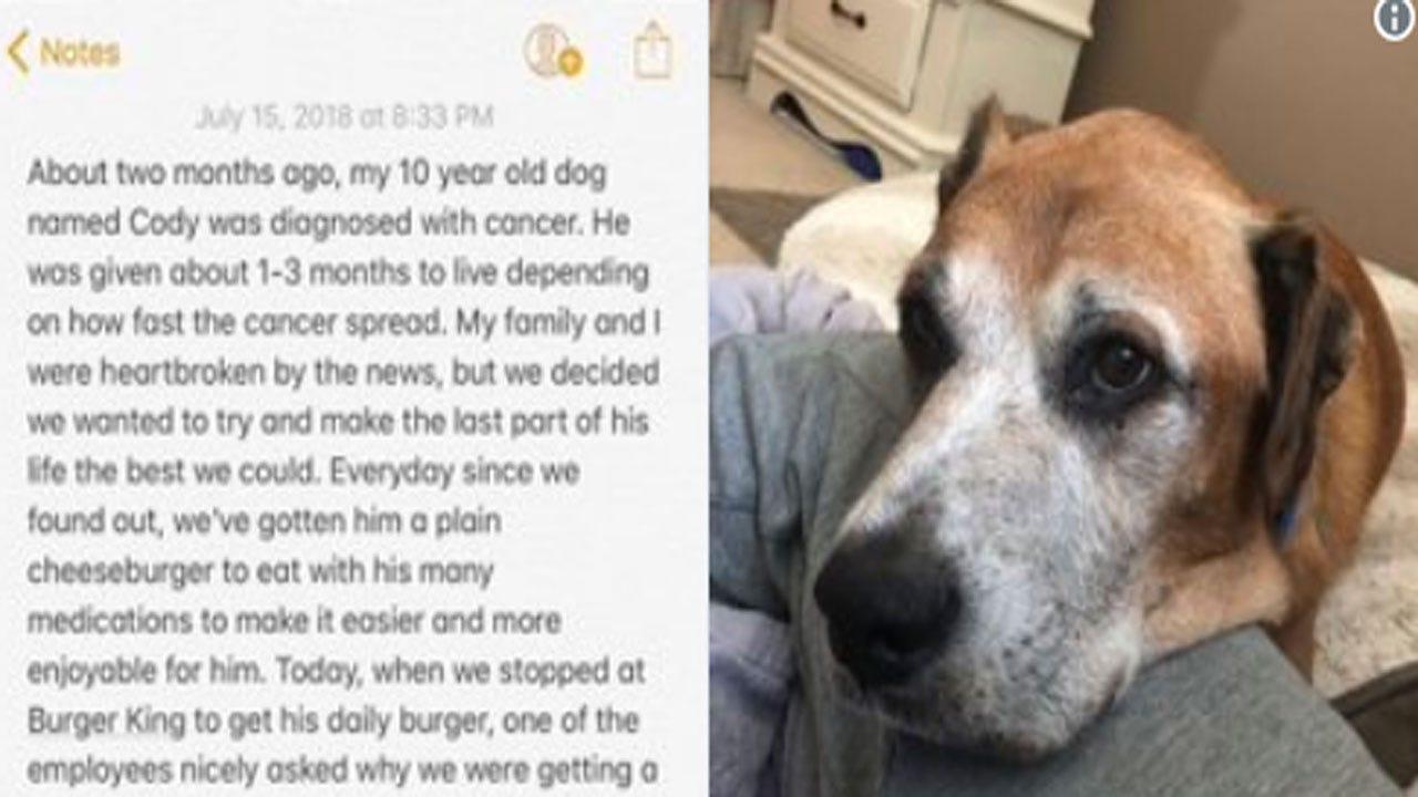 Terminally Ill Dog Gets Free Cheeseburgers For Life At Burger King