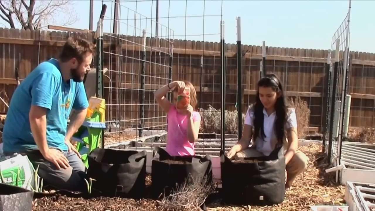 Red Dirt Diaries: Healing Through Gardening