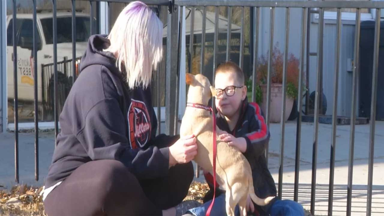 Yukon Boy Asking For Donations For Animal Shelter Instead Of Presents