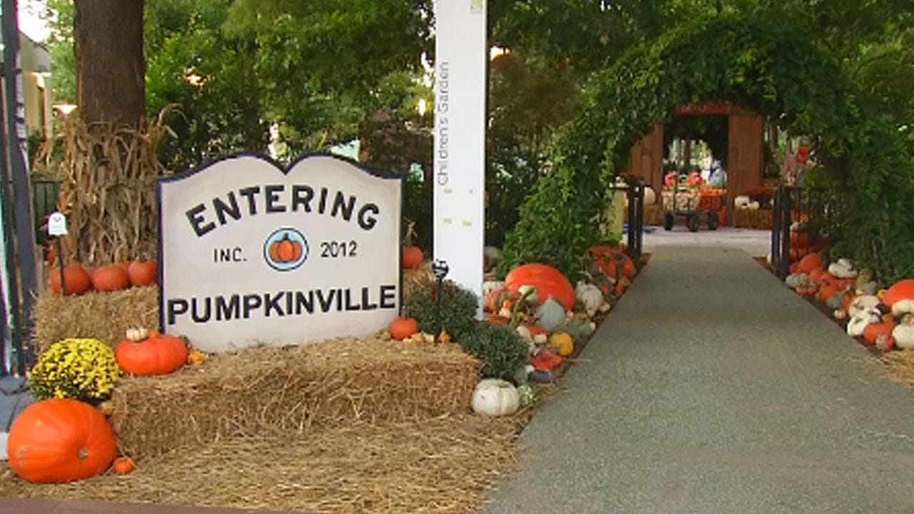 Pumpkinville Opens At The Myriad Botanical Gardens