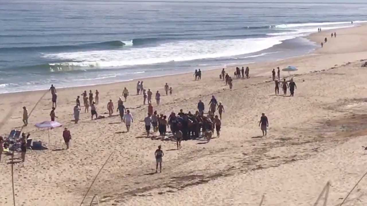 """""""It Was Like Right Out Of That Movie 'Jaws'"""": Man Dies After Shark Attack On Cape Cod"""