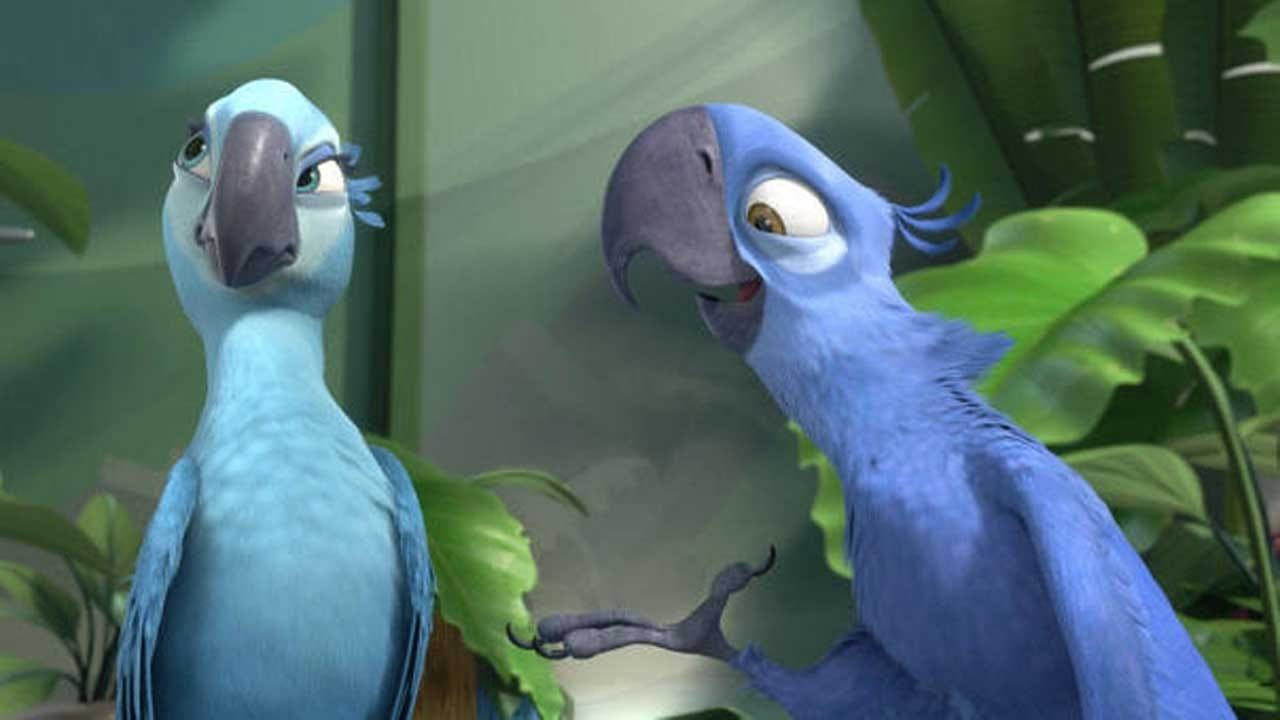 """Blue Macaw Parrot That Inspired """"Rio"""" Is Now Officially Extinct In The Wild"""