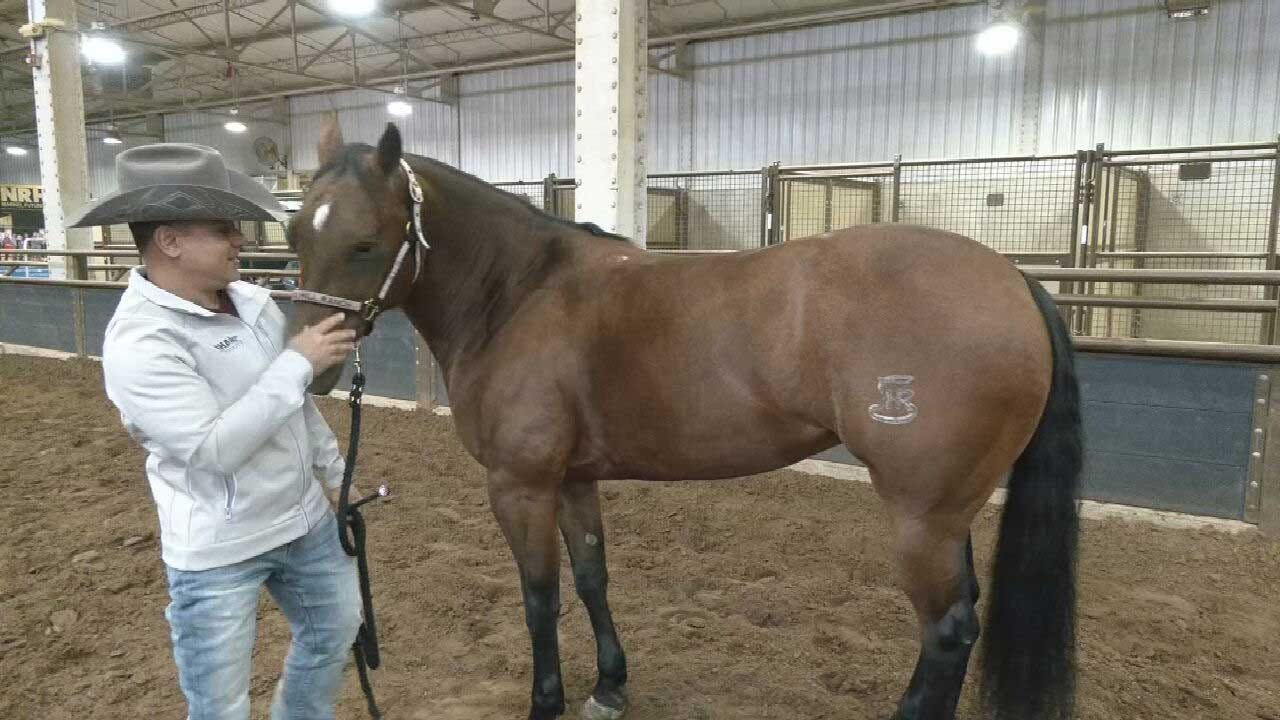 Man Overcomes Major Obstacle To Become A Reining Champion; Hopes To Win Oklahoma Competition