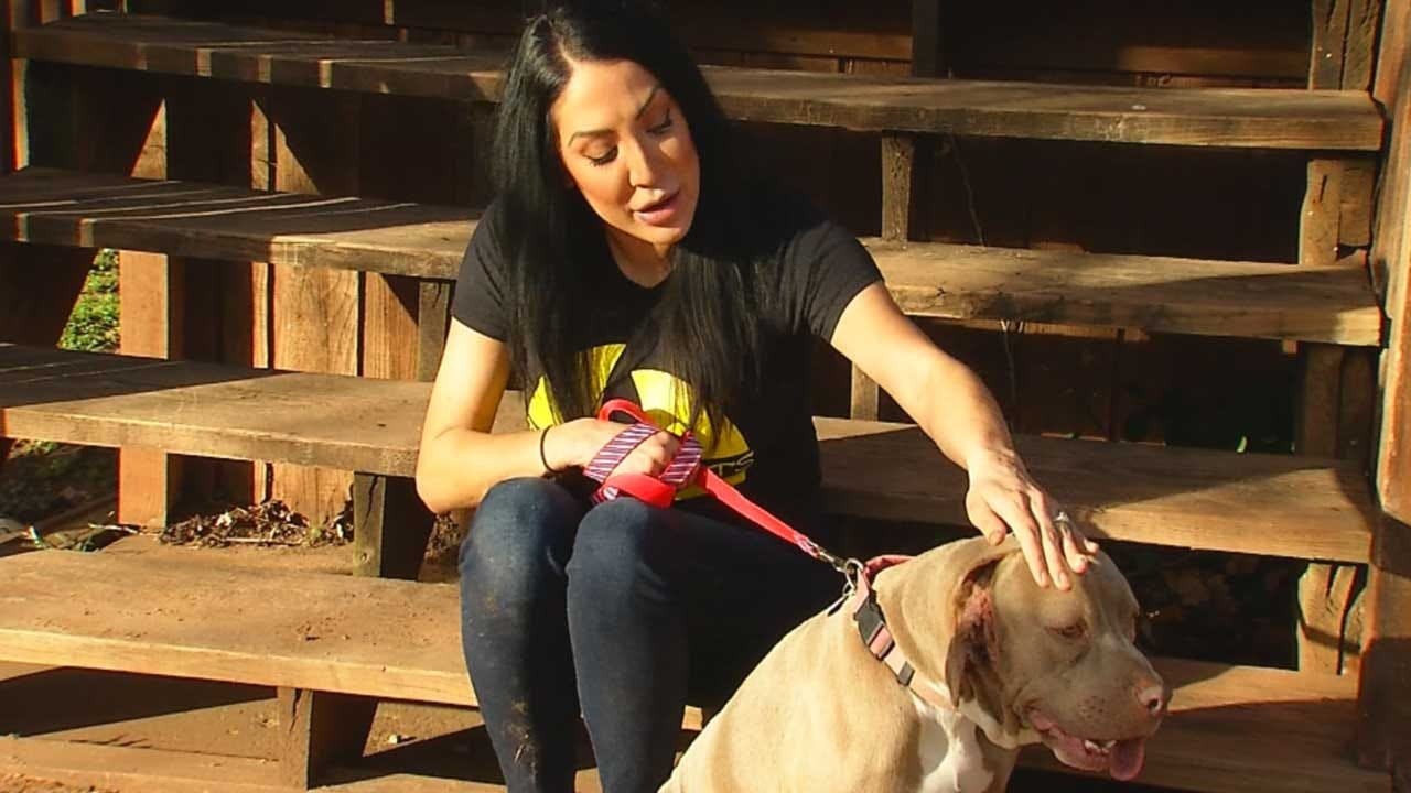 Woman Rescues Oklahoma Dog Born With 2 Mouths
