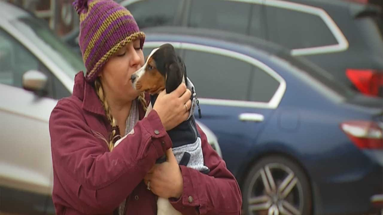 Puppy Recovers At Luther Sanctuary After Successful Surgery At OSU
