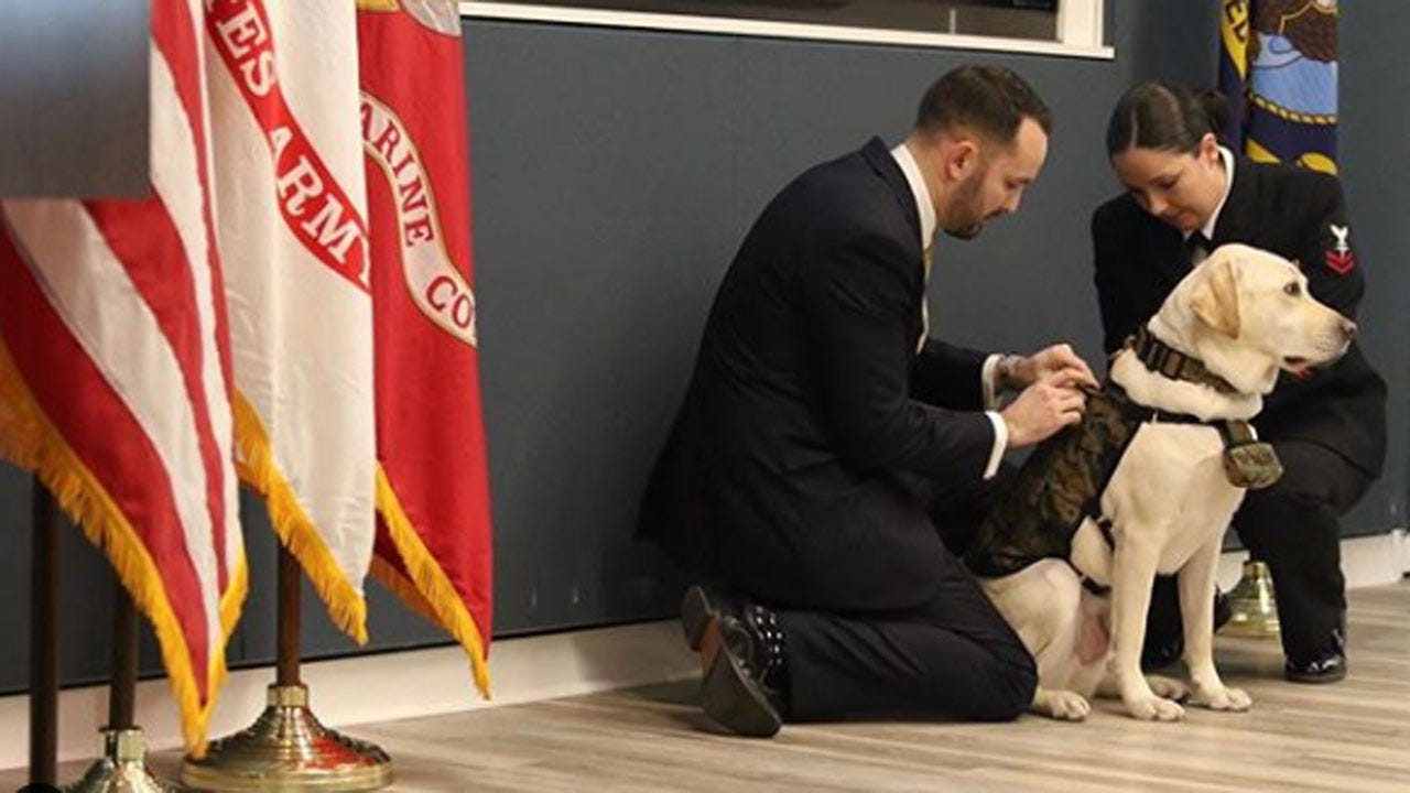 George H.W. Bush's Former Service Dog Sully Takes On A New Mission