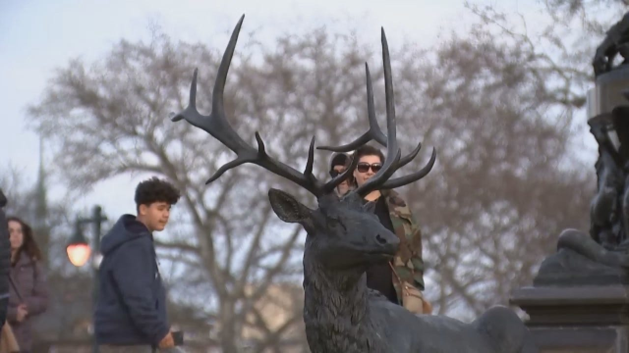 Police: Man Slips, Impales Himself On Deer Statue