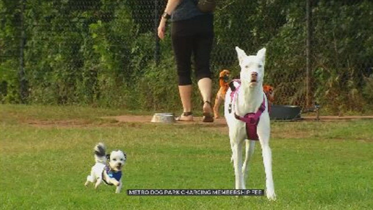 Oklahoma City Dog Park Now Charging Membership Fee