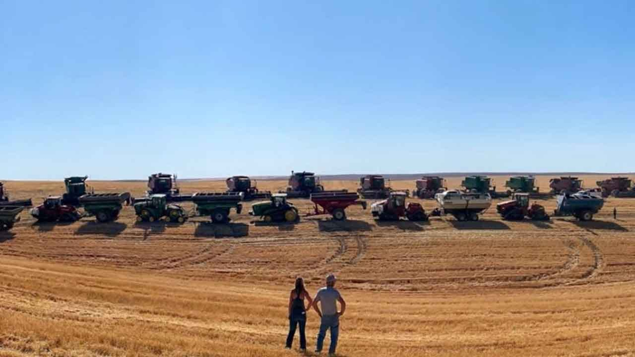 Farmers Harvest Wheat Crop For Neighbor Battling Stage 4 Cancer