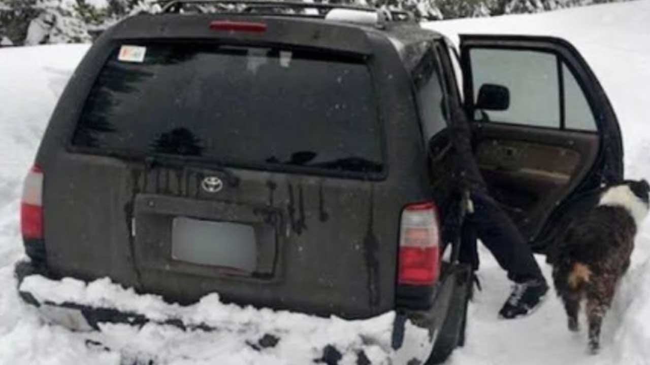 Man Survives For 5 Days On Taco Sauce Packets While Car Trapped In Snow