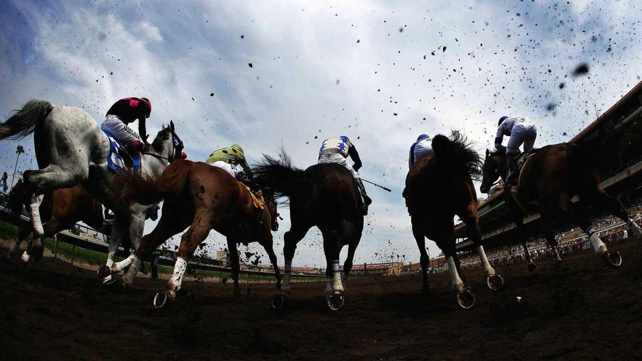 2 Race Horses Euthanized, 1 Left Injured At Famed California Track