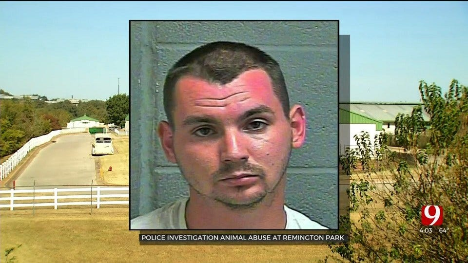 Man Arrested Accused Of Stabbing 5 Horses At Remington Park