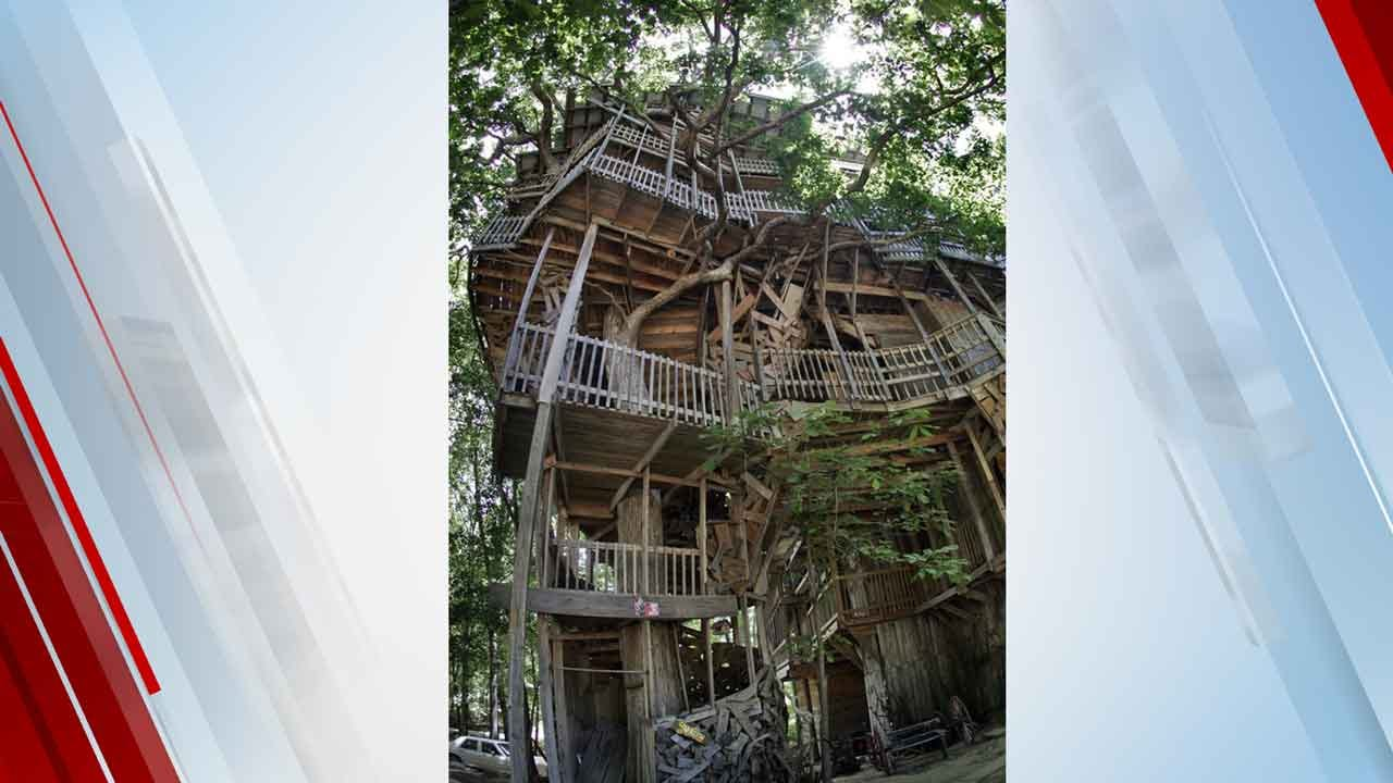 1 Of World's Tallest Treehouses Destroyed By Fire In Minutes