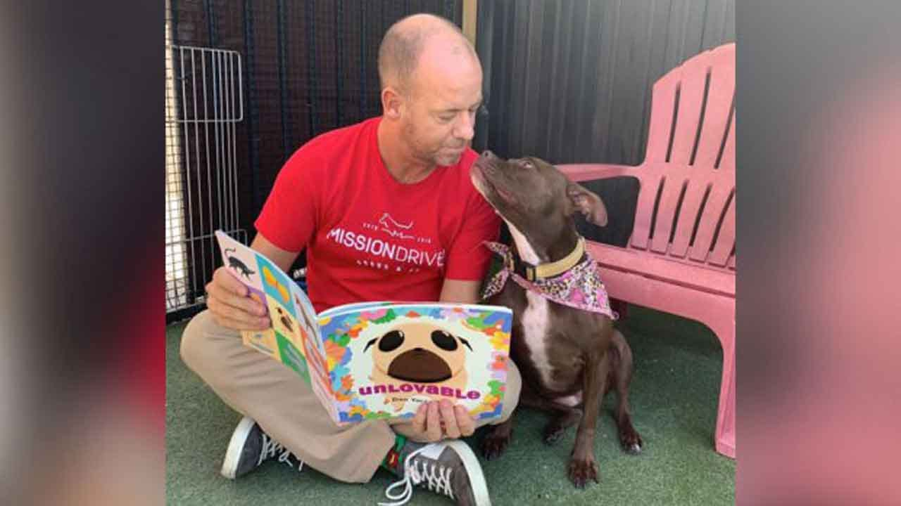 Longtime Shelter Dog Finds Home After Man Rooms With Her