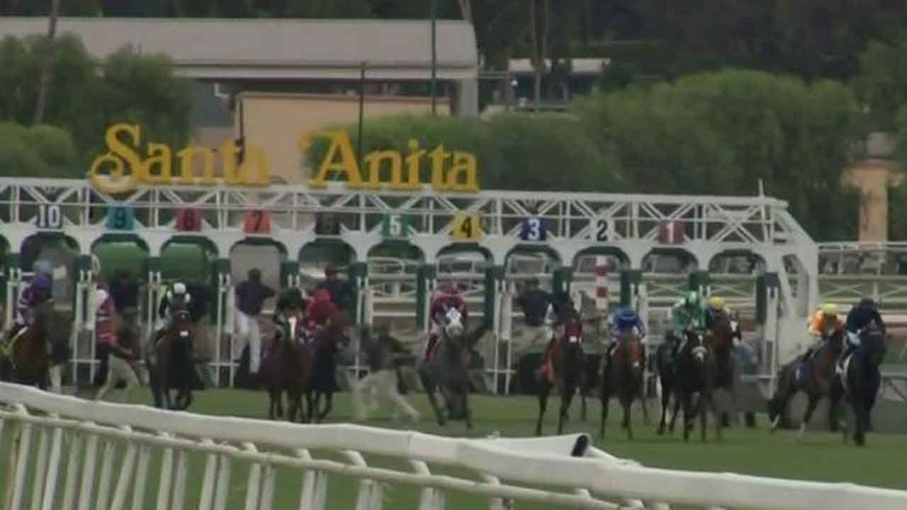 36th Horse Dies At Santa Anita Racetrack Since December
