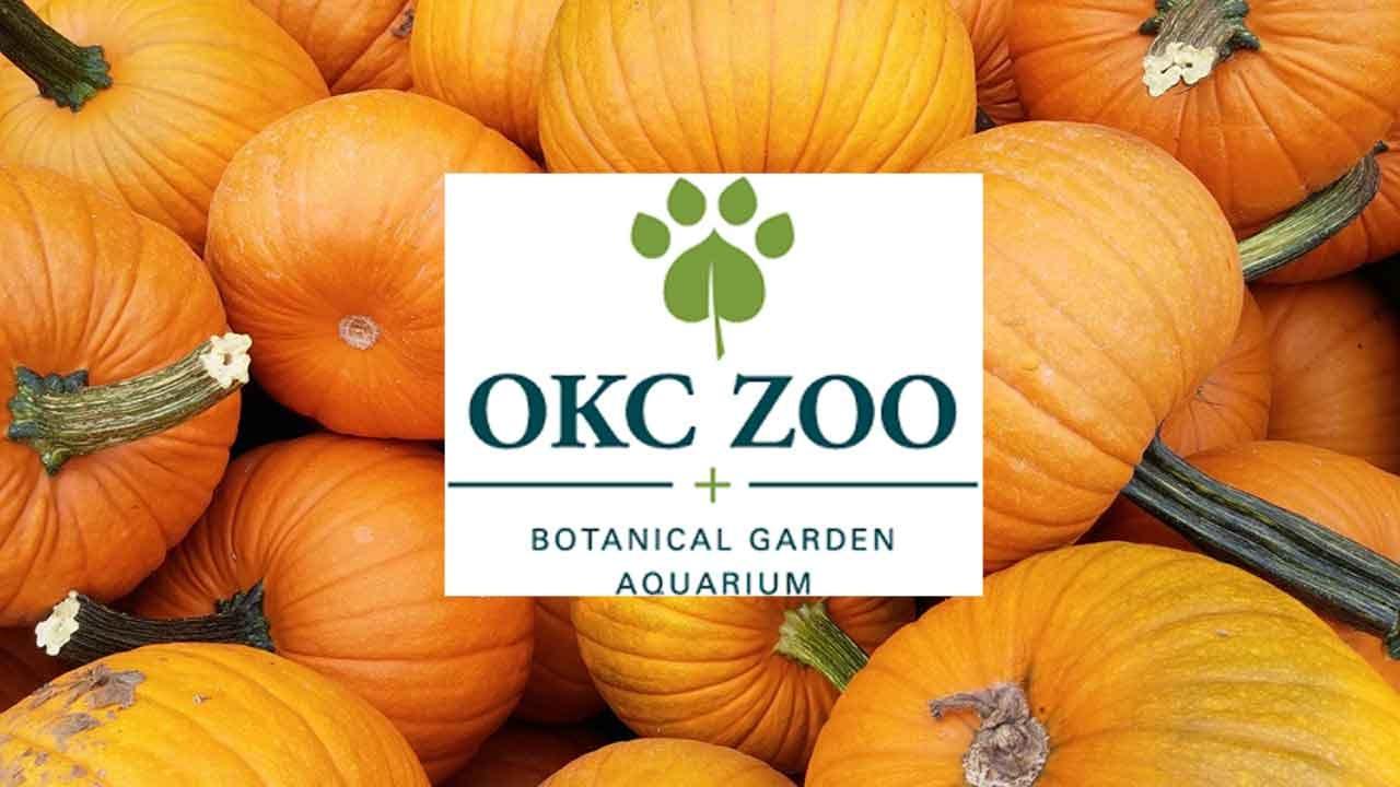 Volunteers Needed For Oklahoma City Zoo's Event Haunt The Zoo