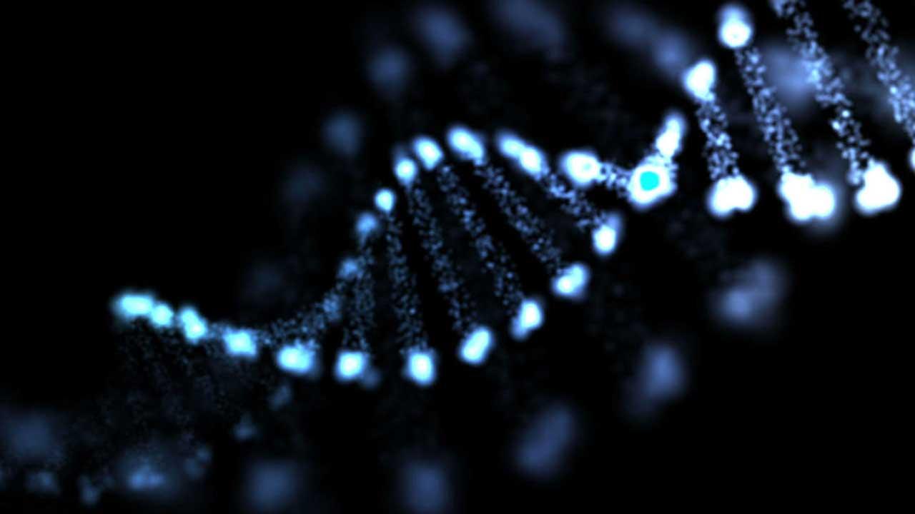 DNA Links Man Who Killed Himself Last Week To Alaska Teen's 1996 Murder