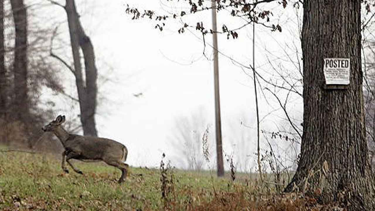 Hunter Fatally Shoots Another Hunter In Minnesota After Mistaking Him For A Deer