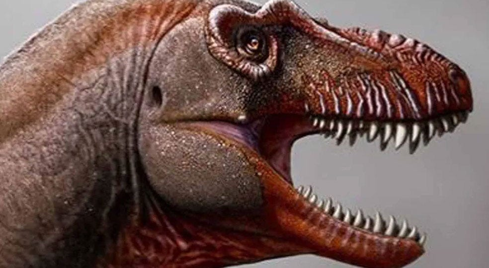 New Member Of The Tyrannosaurus Family Discovered