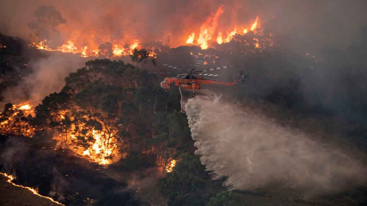 Australia Fires 'Contained' In New South Wales For The First Time This Season