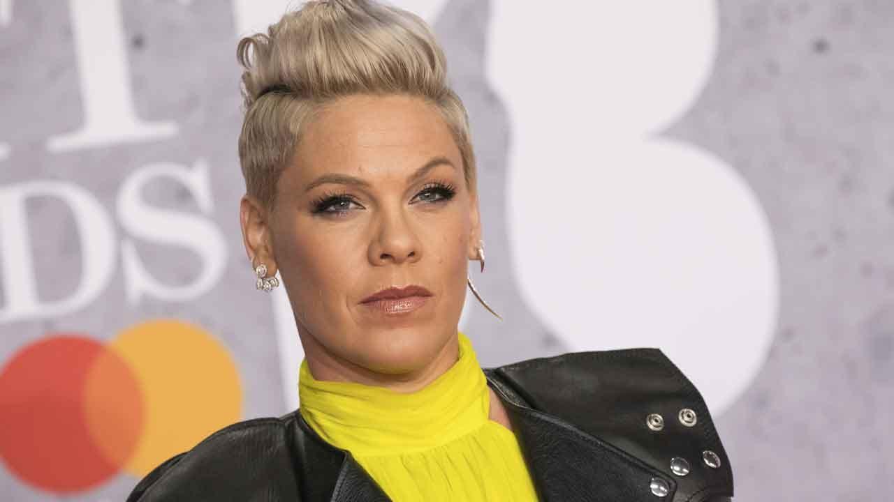 Singer Pink Pledges $500,000 To Fight Australia's Wildfires