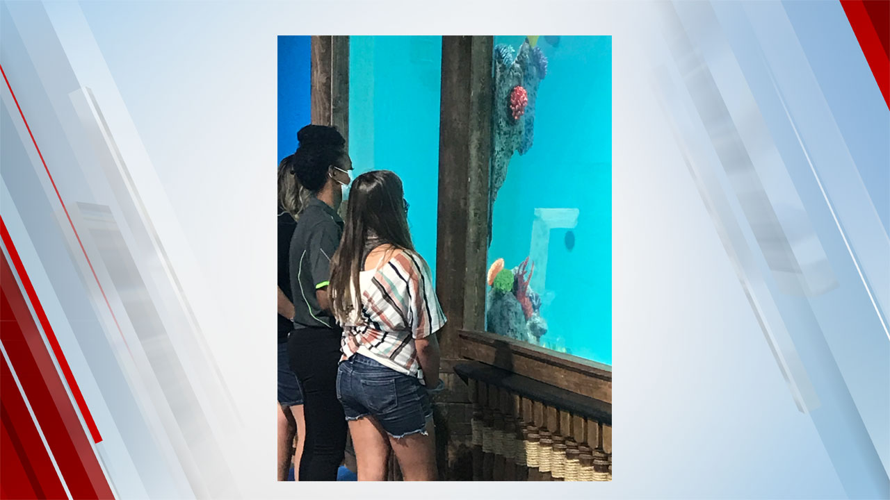 Aspiring Marine Biologist Has Special Experience At Blue Zoo