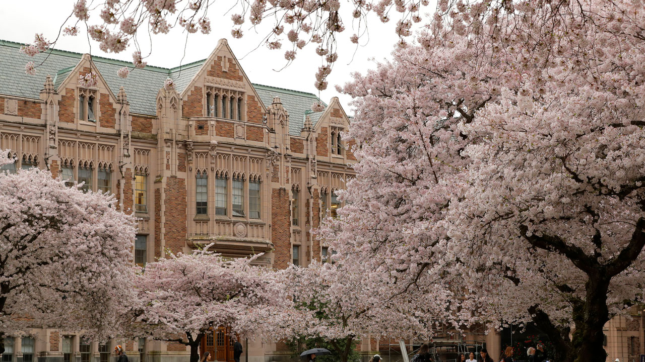 105 University Of Washington Students In Frat Houses Test Positive For Coronavirus