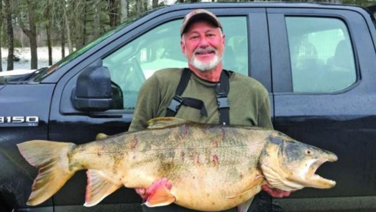 Ice Fisherman Catches Record-Shattering Trout In New Hampshire