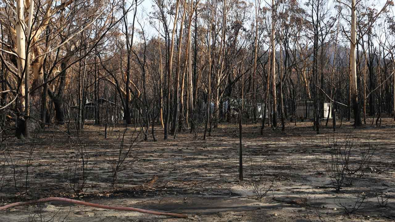 For The First Time Since July, There Are No Bushfires In New South Wales, Australia