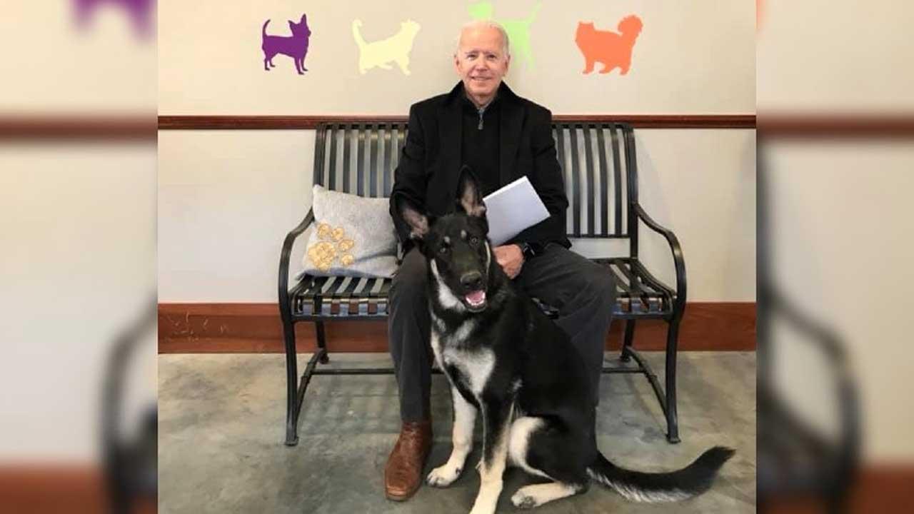 Joe Biden & Major the dog