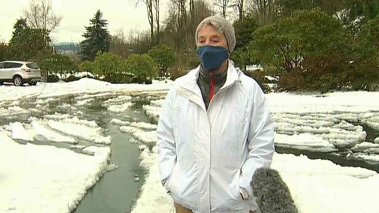 90-Year-Old Woman Walks 6 Miles Through Snow To Get COVID-19 Vaccine