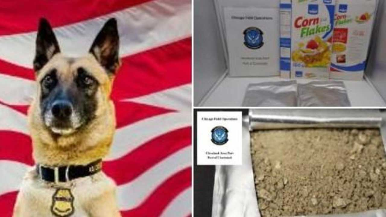 Dog Helps Ohio Authorities Find Corn Flakes 'Frosted' With 44 Pounds Of Cocaine