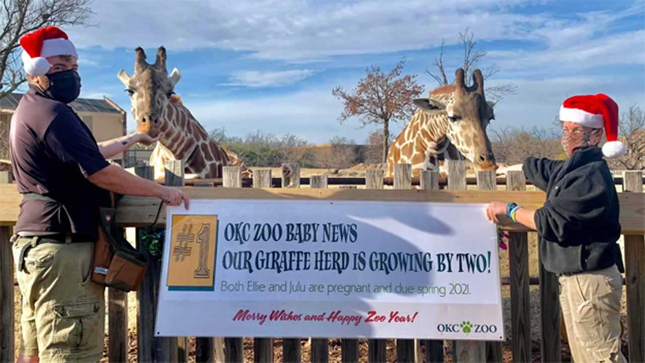 OKC Zoo Ends Its Winter Schedule Early